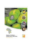 Analysis of the Benin Cashew Sector Value Chain - ACi (2010)
