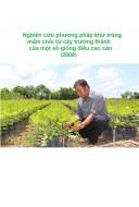Nghiên cứu phương pháp khử trùng mầm chồi từ cây trưởng thành của một số giống điều cao sản (2008)