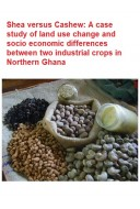 Shea versus Cashew: A	case study of land use change and socio economic differences between two industrial crops in Northern Ghana
